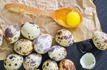 putpelių kiaušinių nauda hipertenzijai)